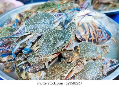 Fresh crab, Blue swimmer crab, Blue manna crab, Sand crab, Portunus pelagicus on ice in a local market