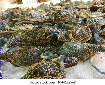 fresh crab for sale at the local market.
