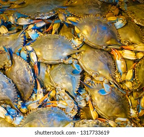 Fresh crabs on display in a fish market