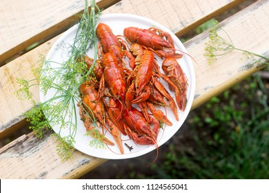 Fresh crayfish boiled with spices and dill served on a round dish.