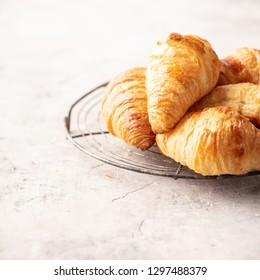 Fresh croissants on light grey concrete background