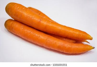 fresh crop of carrots