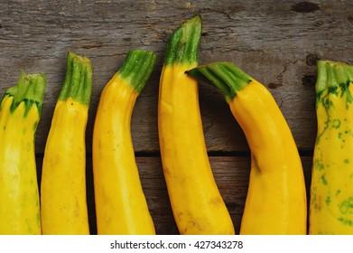 Fresh cropped yellow Zucchini