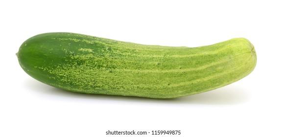 Fresh cucumber on white background