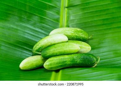 fresh cucumbers on banana leaf