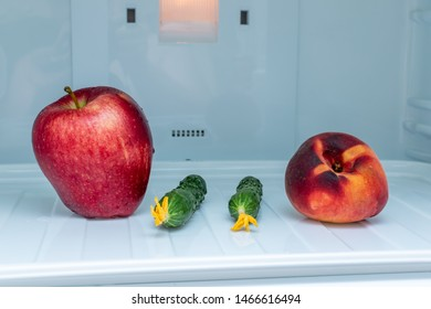 Fresh cucumbers only plucked Apple large, peach in an empty fridge