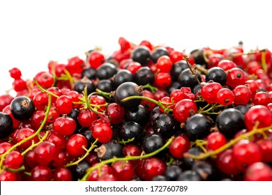 fresh currants on a white background