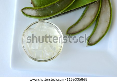 fresh cut aloe vera plant leaves stock photo edit now 1156335868