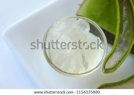 fresh cut aloe vera plant leaves stock photo edit now 1156335880