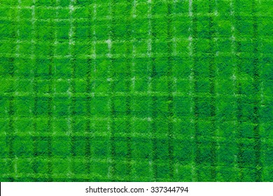 Fresh cut green grass background texture pattern