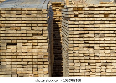 Fresh cut wood stacked for transport