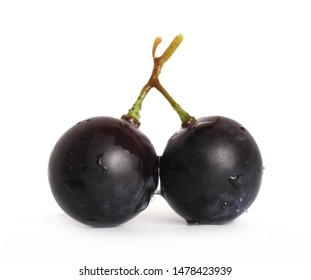 Fresh dark, black grapes isolated on white background