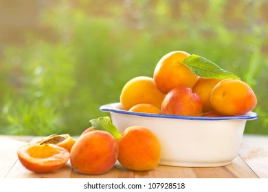Fresh and delicious Apricot