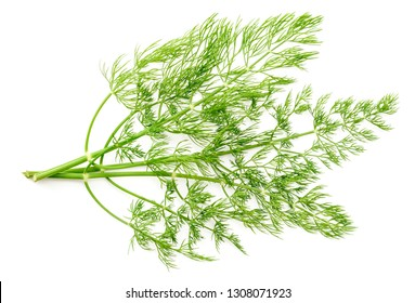 fresh dill herb isolated on white background, top view