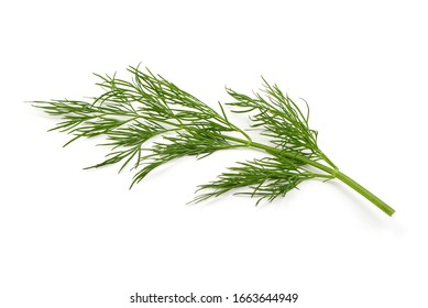 Fresh dill, isolated on white background