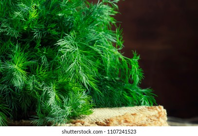 Fresh dill on the old wooden table, rustic style, selective focus