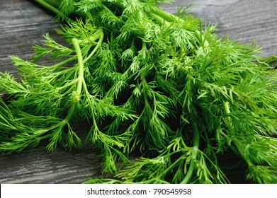 Fresh Dill on wooden background. Healthy and Benefit of Dill.
