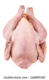fresh domestic chicken isolated on white background