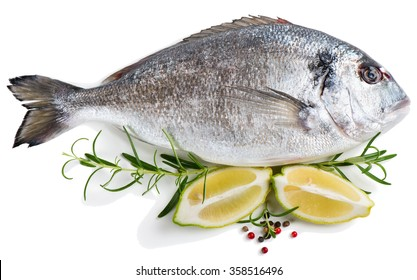 Fresh dorada fish decorated with lemon, peppers and rosemary isolated over the white background
