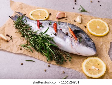 Fresh dorado fish. Dorado and cooking ingredients - rosemary, spices, lemon, garlic, thyme, herbs. Cooking concept. On light stone background.