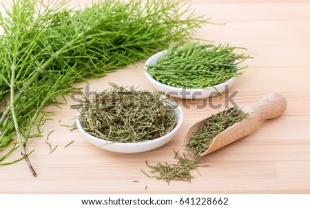 Fresh and dried field horsetail