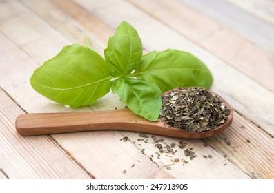 fresh and dried leaf of basil on wood