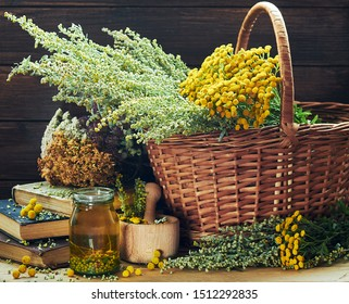 Fresh and dried wiild herbs: absinth wormwood plant, tansy, dried St. John's wort, cllover and mifoil, assorted on the wooden rustic table,closeup, copy space, alternative medicine and naturopathy ide