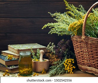 Fresh and dried wild herbs: absinth wormwood plant, tansy, dried St. John's wort, cllover and mifoil, assorted on the wooden rustic table,closeup, copy space, alternative medicine and naturopathy ide