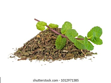 Fresh and dry mint on a white background