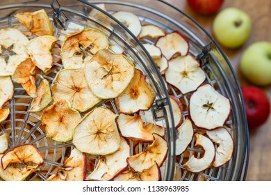 Fresh dryed apple chips prepared in a home fruit and vegetable dryer. Healthy food concept