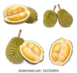 A fresh durian (Puangmanee Durian) is the king of fruits on white background,durian fruit with delicious golden yellow soft flesh,durian isolated on white background,