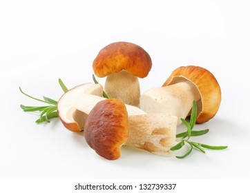 Fresh edible mushrooms