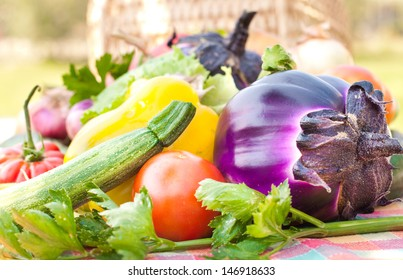 Fresh eggplant and other vegetables