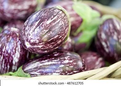 Fresh eggplant at the Saturday farmers market at Portland State University, in Portland, Oregon, USA