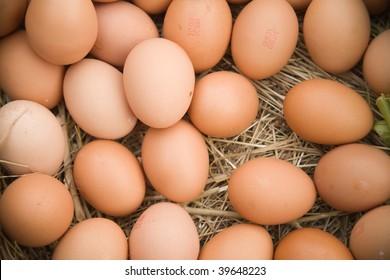 Fresh eggs arranged in a straw barn setting.