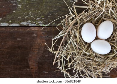 Fresh eggs from the farm ready for Easter festival with copy space.