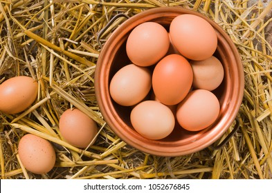 Fresh eggs in the henhouse