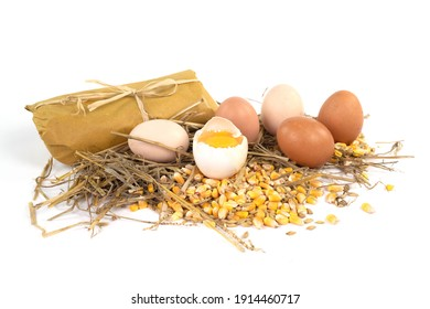 fresh eggs from organic farming