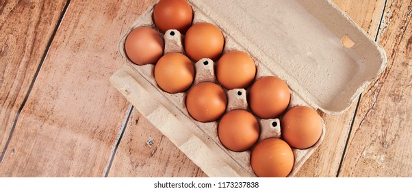 fresh eggs in pater tray