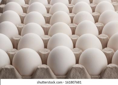 fresh eggs sitting in a large carton