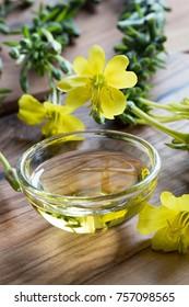 Fresh evening primrose flowers next to a bowl of evening primrose oil