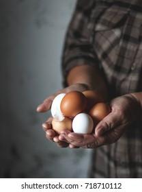 Fresh farm eggs in hands