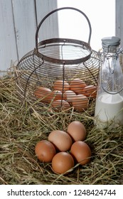 the fresh farm eggs on the straw