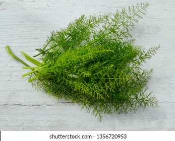 Fresh fennel plant bunch on white wooden background. Closeup wild fennel green tops ingredient for soup tea or salad. Foeniculum vulgare herb spice on rustic kitchen table from organic farm top view