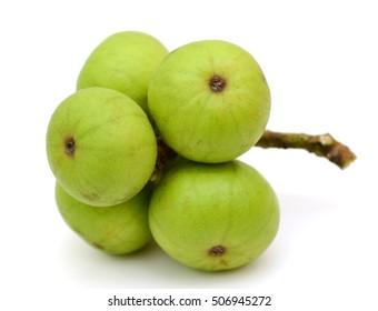 Fresh figs fruits (Ficus glomerata) isolated on white background