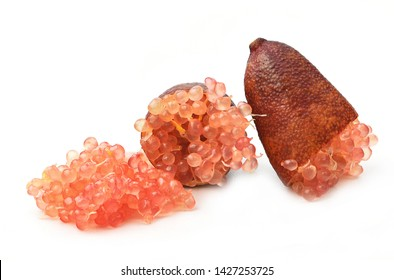 fresh finger lime cut in half isolated on white background