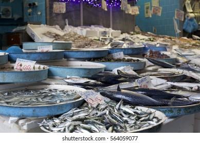 Fresh Fish Displayed in Open Fish Market