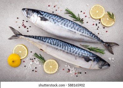 Fresh fish. Mackerel with salt, lemon and spices on gray background. Cooking fish with herbs. Top view