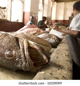Fresh fish meat on a fish market