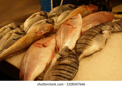 Fresh fish in the Mercado de Atarazanas (Shipyard market ) Malaga, Spain